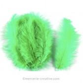 Plume verte pour déco x10