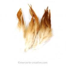 Plume naturelle coq camel et blanc x10